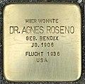 Stolperstein für Dr. Agnes Roseno (Köln).jpg