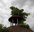 Stone house cottage garden 2 (4779921595).jpg