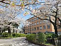 Sunny day in Hiroo.jpg