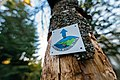 Superior Hiking Trail Sign, Minnesota North Shore (36767800714).jpg
