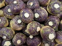 Swede - rutabaga - veggiegroup.jpg
