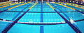 Swimming pool with lane ropes in place cropped.jpg