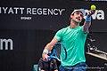 Sydney International ATP 6 January 2019 (33039981698).jpg