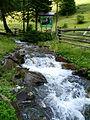 Synevyr Mizhhirskyi Zakarpatska-National park-spring near road to the lake-1.jpg