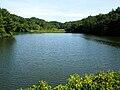 Taizu Pond.jpg