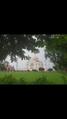 Taj the symbol of love 02.png