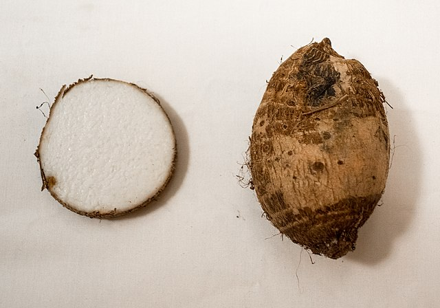 640px-Taro_root_and_crossection_of_taro_