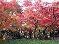 TenryujiHogonin Shishiiwa.jpg