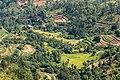 Terrace Farming in Nepal in Rakathum VDC-0373.jpg