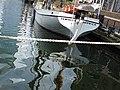 Thames Quay 7085.JPG