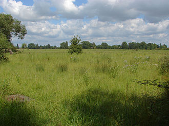 Egham Hythe - Thorpe Hay Meadow, Egham Hythe and Thorpe