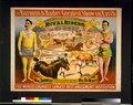 The Barnum & Bailey greatest show on Earth-The rival riders, Wm. Shoutes ... Wm. DeMott LCCN97502462.tif