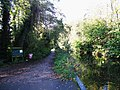 The Basingstoke Canal - geograph.org.uk - 1056989.jpg