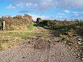 The Carrickinab Road from the waters' edge - geograph.org.uk - 2165022.jpg
