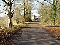 The Lane to Towthorpe Grange - geograph.org.uk - 632126.jpg