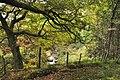 The Nant Du - Glyncorrwg - geograph.org.uk - 1505425.jpg