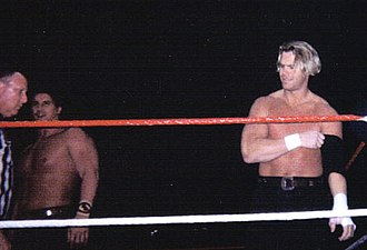 WrestleMania XI - The Smoking Gunns were unable to retain the World Tag Team Championship against Owen Hart and Yokozuna.