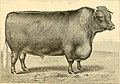 The breeds of live stock, and the principles of heredity (1887) (14758245936).jpg