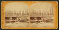 The levee and railroad station, from Robert N. Dennis collection of stereoscopic views.png