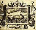 Theatrum omium Scientiarum, sive Apparatus, quo exceptus fuit Excmus. Princeps D. Innicus de Guevara et Tassis Comes de Oñate, et Villamediana, etc., and etc., ac Neapolitani Regni prorex (14559067579).jpg