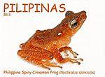 Theloderma spinosum 2011 stamp of the Philippines 2.jpg