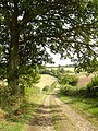 Tinker's Lane, Bentworth - geograph.org.uk - 240536.jpg