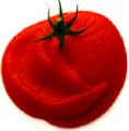 Tomato Ketchup.png