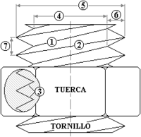 Parts del cargol