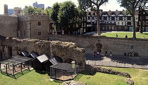 image of Tower of London -cages for ravens-8b-5Aug2004