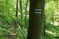 Trail to Szczerba castle.JPG