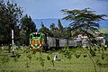 Train passing by Nakuru town.jpg