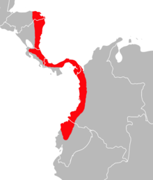Map of Transandinomys bolivaris distribution