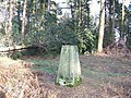 Trig Point in Redlands Wood - geograph.org.uk - 326118.jpg