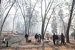 President Donald J. Trump, is joined by California Governor Jerry Brown, Governor-elect Gavin Newsom, FEMA Administrator Brock Long and Paradise, Calif., Mayor Jody Jones, as he survey's the fire damage to Skyway Villa Mobile Home and RV Park Saturday, Nov. 17, 2018, in Paradise, Calif., which was devastated by the Camp fire.