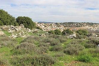 Tzur Hadassah - Image: Tzur Hadassa as seen from Kh. Jurish