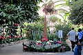 U.S. Botanic Garden at the Holidays (23883219732).jpg