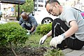 U.S. Navy Logistics Specialist 1st Class Edom Tibebe, left, pulls weeds with another volunteer during the monthly Yamato Train Station cleanup organized by the Yamato Soji Ni Manabu Kai in Yamato, Japan, Aug. 9 120809-N-QL603-109.jpg