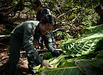 US, Japanese Airmen conduct survival training during Cope North 16 160216-F-CH060-334.jpg