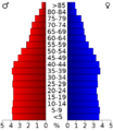 USA Arizona age pyramid.png