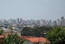 Central region of Uberlândia