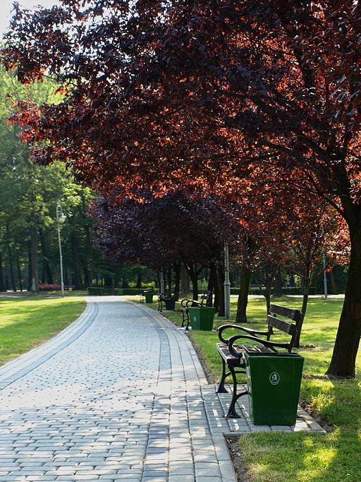 Uliczka Park Kościuszki Katowice