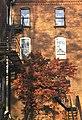 Ulysses, NY 2.jpg