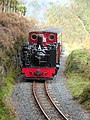 Vale of Rheidol Railway - geograph.org.uk - 587529.jpg