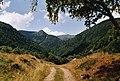 Vallée de la Wormsa1.JPG