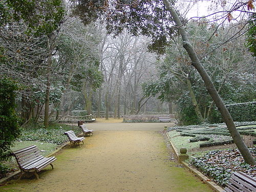 Winter in the city gardens of Campo Grande. Valladolid campogrande invierno01 lou.JPG