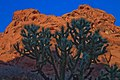 Valley of Fire State Park (6294505732).jpg