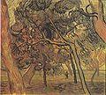 Van Gogh - Studie mit Fichten im Herbst.jpeg