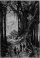 Verne - L'Île à hélice, Hetzel, 1895, Ill. page 182.png