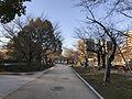 View in Hiroshima Peace Memorial Park 6.jpg