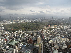 View of Yoyogi Park & Meji Shrine from Shinjuku